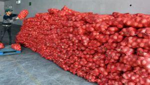İBB' den patates ve soğan yardımı