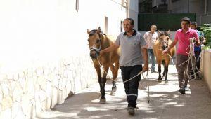 Karşıyaka Belediyesi operasyon düzenledi