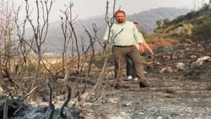 Başkan Gümrükçü Marmaris Yangın Bölgesinde